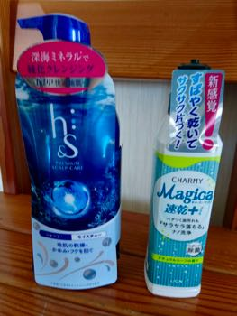 shampoo&more - 1.jpg